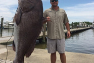 Bắt được cá mú khổng lồ 135 kg