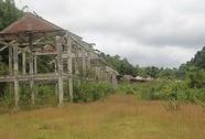 Nghệ An: Tộc người ngủ ngồi vẫn sống giữa rừng