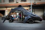 """Phát hiện """"quái vật biển"""" dài gần 5m ở Trung Quốc"""
