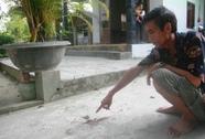 Vụ cắt cổ vợ sắp cưới rồi tự tử: Nạn nhân đã tỉnh lại