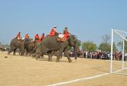 Hàng ngàn người chịu đựng nắng nóng, xem voi đá bóng
