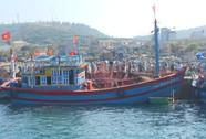 Chìm tàu vì trúng luồng cá trên 50 tấn