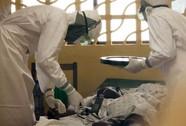 Rùng mình trước dịch Ebola