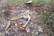 Phát hiện một bộ xương người trong rừng sâu