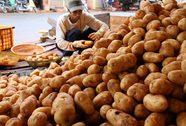 Khó kiểm soát rau quả Trung Quốc