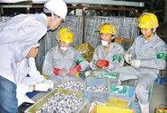 Dạy nghề miễn phí cho lao động Việt Nam tại Hàn Quốc
