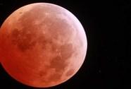Hiện tượng 'Mặt trăng máu' diễn ra ngày 8-10