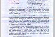 Quảng Nam ra công văn 'động viên' xài xi măng tỉnh nhà