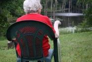 Bệnh Parkinson có liên quan với vi khuẩn ở ruột