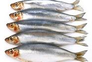 Ăn cá để bảo vệ thính lực