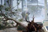 Nhật Bản gồng mình đối phó siêu bão