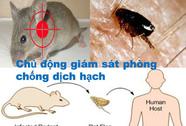 """""""Cái chết đen"""" đe dọa Việt Nam"""