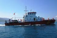 Hai tàu hàng đâm nhau, 11 thuyền viên gặp nạn