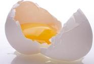 Sản xuất trứng gà giàu Omega-3