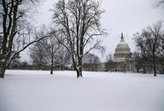 Tòa nhà Quốc hội Mỹ lại sơ tán vì máy bay