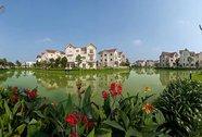 """vingroup - """"Nhà phát triển bất động sản tốt nhất Việt Nam"""""""