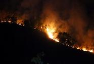 Cháy hàng trăm ha rừng vì đốt... vàng mã!