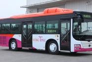 """Đồng Nai mua 550 xe buýt Trung Quốc: Tài xế phản đối, chính quyền bảo """"tùy doanh nghiệp"""""""