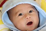 Báo NLĐO Tết con dê: Xem là mê!