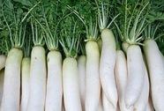 Món ăn thuốc từ củ cải trắng