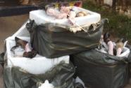 Bắt 1,4 tấn chân trâu, bò thối từ Thanh Hóa vào TP HCM tiêu thụ