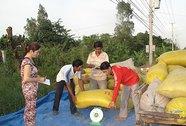 Mua tạm trữ lúa gạo: Doanh nghiệp than khó