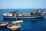 Tàn sát hải sản ven bờ