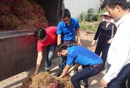 Cứu nông sản không thể dựa vào lòng hảo tâm