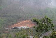 """TP Đà Lạt: Vui mừng vì cơn """"mưa vàng"""""""