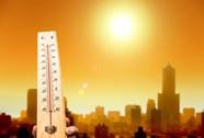 Mùa hè, đừng để bệnh vì... thiếu nắng
