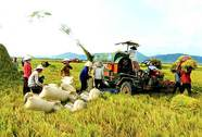 Những nghiên cứu nổi bật trong ngành nông nghiệp