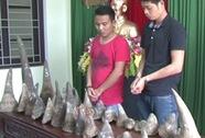 """Vận chuyển 31 sừng tê giác cho """"người lạ"""", 2 người bị khởi tố"""