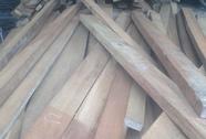 Bắt gỗ lậu tại xưởng cưa em trai chủ tịch xã