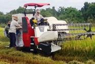Giành địa bàn gặt lúa, chém 2 chú cháu trọng thương
