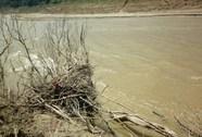 Phát hiện thi thể đang bị phân hủy bên dòng sông Thanh