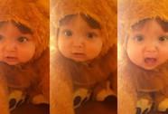 """Tiếng gầm của """"sư tử nhí"""" đáng yêu hút 23 triệu lượt xem"""