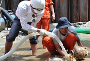 Khẩn cấp khai quật tàu cổ ở Quảng Ngãi