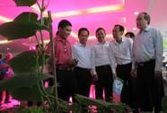 TP HCM tìm hướng phát triển HTX nông nghiệp