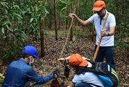 Sinh viên trồng rừng hưởng ứng ngày Môi trường thế giới