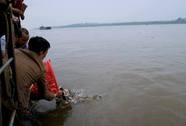 Vụ thả cá chim trắng: Đề nghị Bộ Công an điều tra, xử lý