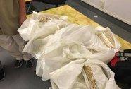 5 khách bay từ Thái Lan buộc hơn 28 kg vàng quanh bụng