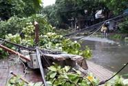 Bão số 2 vào đất liền: Cây đổ, mất điện, nhà tốc mái