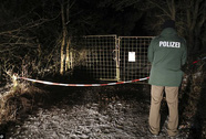 Tiệc tùng trong vườn, 6 người chết bí ẩn