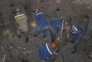 Lình xình chuyện mua than cho điện