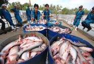 Cá tra vào Trung Quốc: Mừng một lo mười!