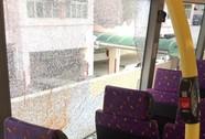 Đâm chết người trên xe buýt rồi nhảy qua cửa sổ