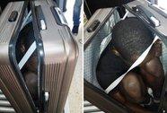 Đến châu Âu bằng cách trốn trong ...vali