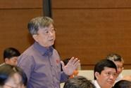 Đại biểu QH tranh luận với Phó thủ tướng về Sơn Trà