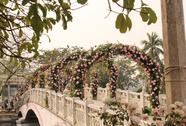 Ban tổ chức nói gì về hoa giả, hoa héo ở Lễ hội hoa hồng?