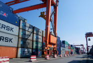 Sốc với phí cảng biển ở Hải Phòng